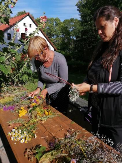 16 Blumenrauten Hiddensee I Foto © Kirsten Mengewein kiraton.com